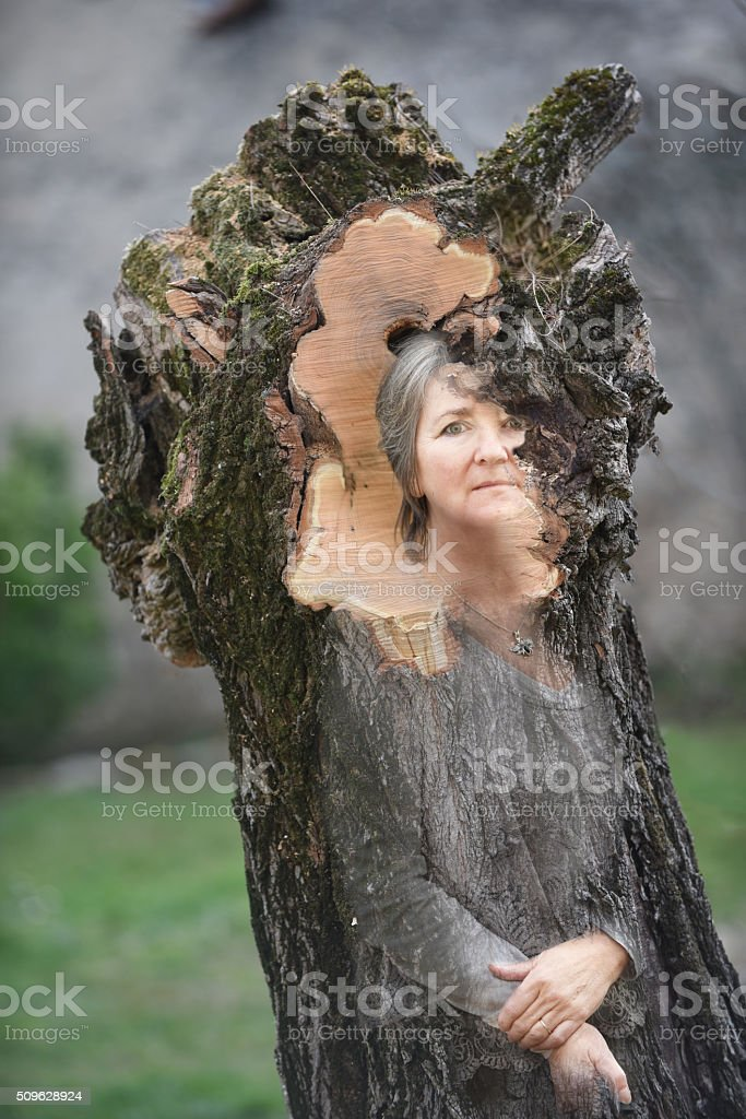 Female tree spirit stock photo