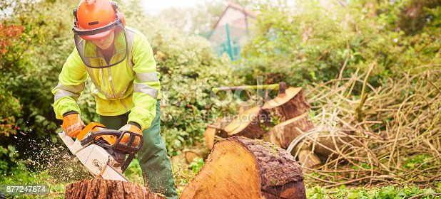 istock female tree surgeon 877247674