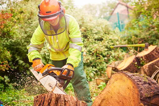 istock female tree surgeon 878040326