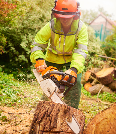 istock female tree surgeon 878040442