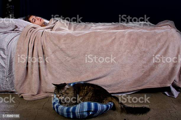 Female unable to sleep because of noisy cat picture id513989155?b=1&k=6&m=513989155&s=612x612&h=nmmfe6omidd97zfs rzzkqtxgvzfqkvmc570wry8b00=