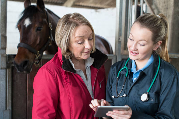 Female vet examining horse in stables showing owner digital tablet picture id941416984?b=1&k=6&m=941416984&s=612x612&w=0&h=semvi njbn8q3flwzmfo 5tpyn trecxlibbrmrlnvc=