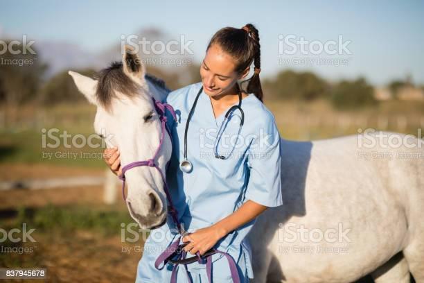 Female vet stroking horse picture id837945678?b=1&k=6&m=837945678&s=612x612&h=azntzpbb3au9nxlr8u8ftufcc46q6h x87ac9 wi0sq=
