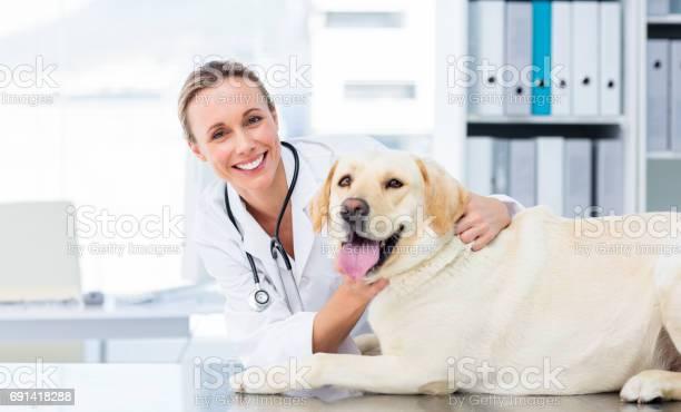 Female veterinarian examining dog picture id691418288?b=1&k=6&m=691418288&s=612x612&h=vi ube jf j4v99s11hpqnllfc7o9ouj2ekys1ag22m=