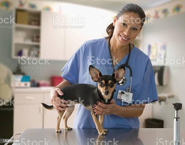 Female veterinarian with small dog picture id150684288?b=1&k=6&m=150684288&s=612x612&h=ocwis tq3ac6nqpcz0i7 ffz1 lgztwvfrubetn4j74=