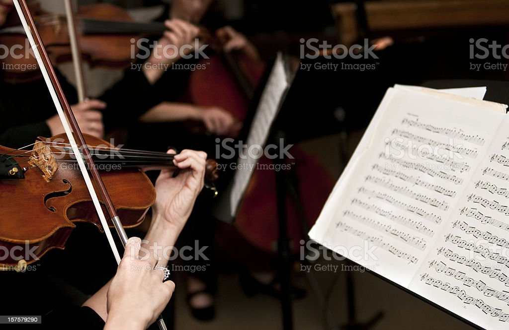 Female Violinists stock photo