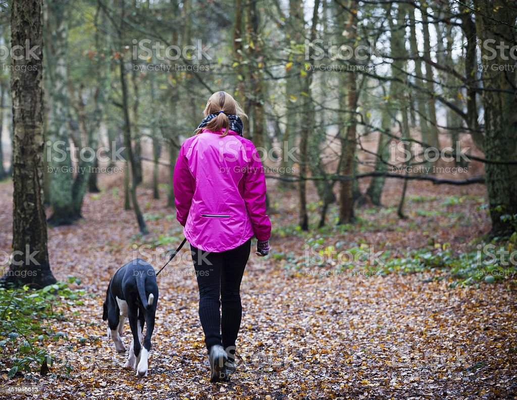 Female walking with Great Dane Puppy stock photo
