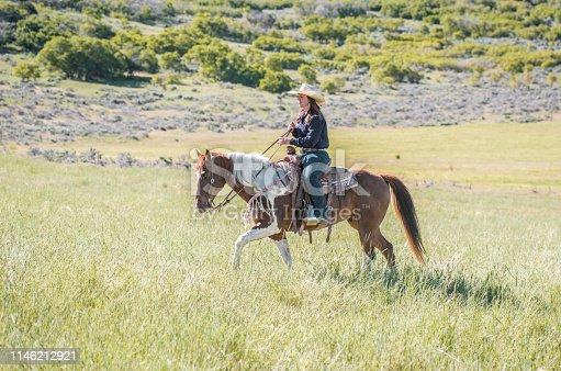 Western horsewoman walking through Utah grassland on paint horse.