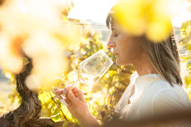 Weibliche Winzer mit Glas Weißwein auf Weingut – Foto