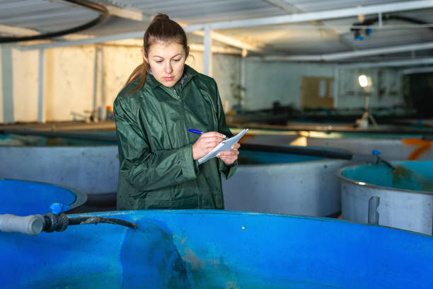 female worker of trout farm watching fish and writing - aquacultura imagens e fotografias de stock