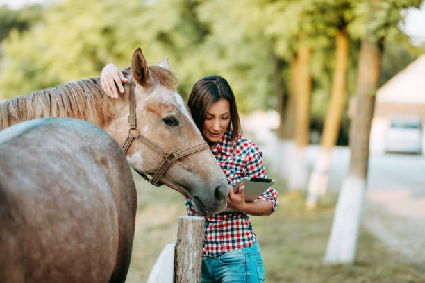Female working on digital tablet in farm horse picture id1168736998?b=1&k=6&m=1168736998&s=612x612&w=0&h=dvptvhlnfy0ws6w06qsbqvkyr8afdtfb3mbax1eiglo=