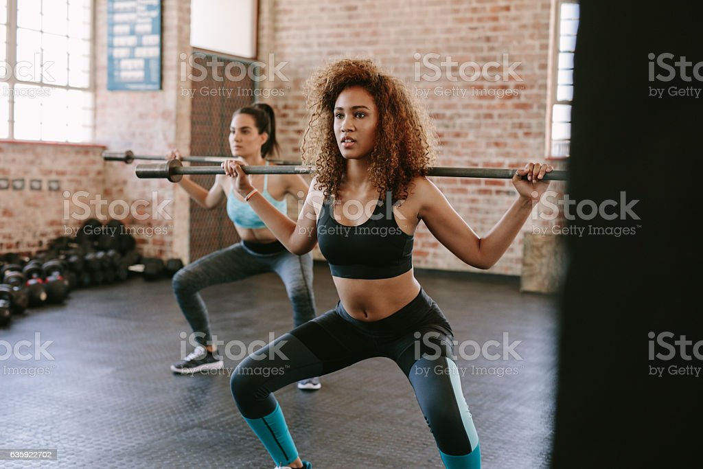 Females working out in gym with barbell stock photo