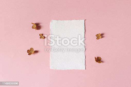 Feminine floral wedding, birthday stationery mock-up scene. Blank deckled edge cotton paper greeting card. Dry hydrangea flower petals on pink table background, flat lay, top view.