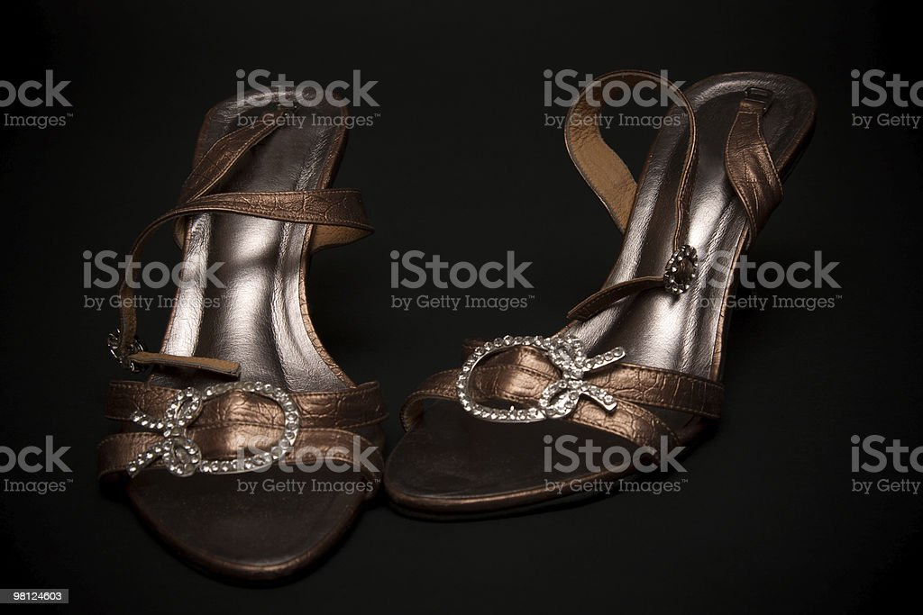 Feminine loafers from golden skin royalty-free stock photo