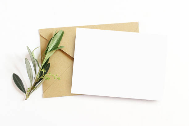 여성 편지지, 데스크톱 모형 장면 빈 인사말 카드와 올리브 가지와 공예 봉투 화이트 테이블 배경입니다. 평면 위치, 최고 볼 수 있습니다. - 초대장 뉴스 사진 이미지