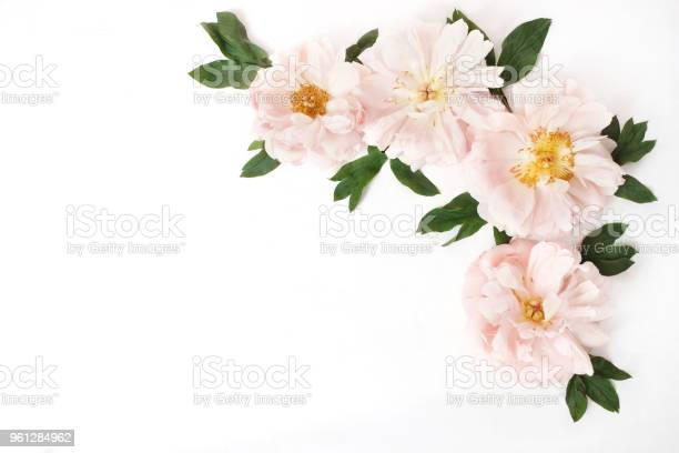 Feminine styled stock photo with pink peony flowers and leaves on picture id961284962?b=1&k=6&m=961284962&s=612x612&h=egplssyc07 8k1 61dfcfhkhf6vvb hwlf2zulzayfa=