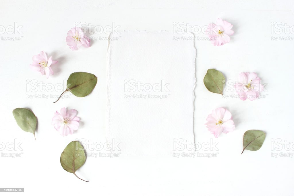 Feminine wedding, birthday desktop mock-up. Blank cotton paper greeting card, dry eucalyptus leaves and pink cherry tree blossoms.White table background. Flat lay, top view. stock photo
