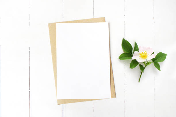 Feminine wedding stationery, floral desktop mock-up scene. Blank greeting card, craft envelope and blooming wild rose branch. Old white wooden table background. Flat lay, top view. stock photo