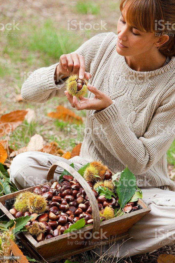 femme préparant des châtaignes stock photo