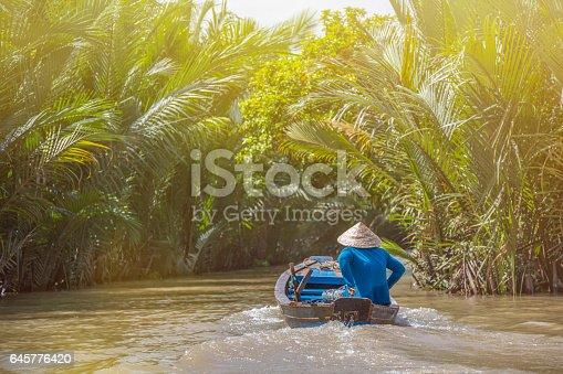 Moteur, Asie, Rivière, climat tropical, chapeau conique, Vietnam