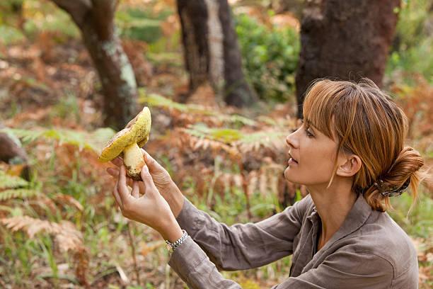 femme qui ramasse un  champignon - höst plocka svamp bildbanksfoton och bilder