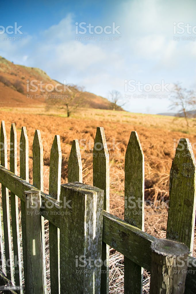 Fence and Field in the Lakedistrict stock photo