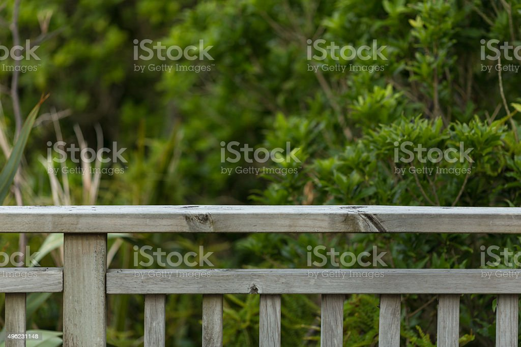 Fence and forest stock photo