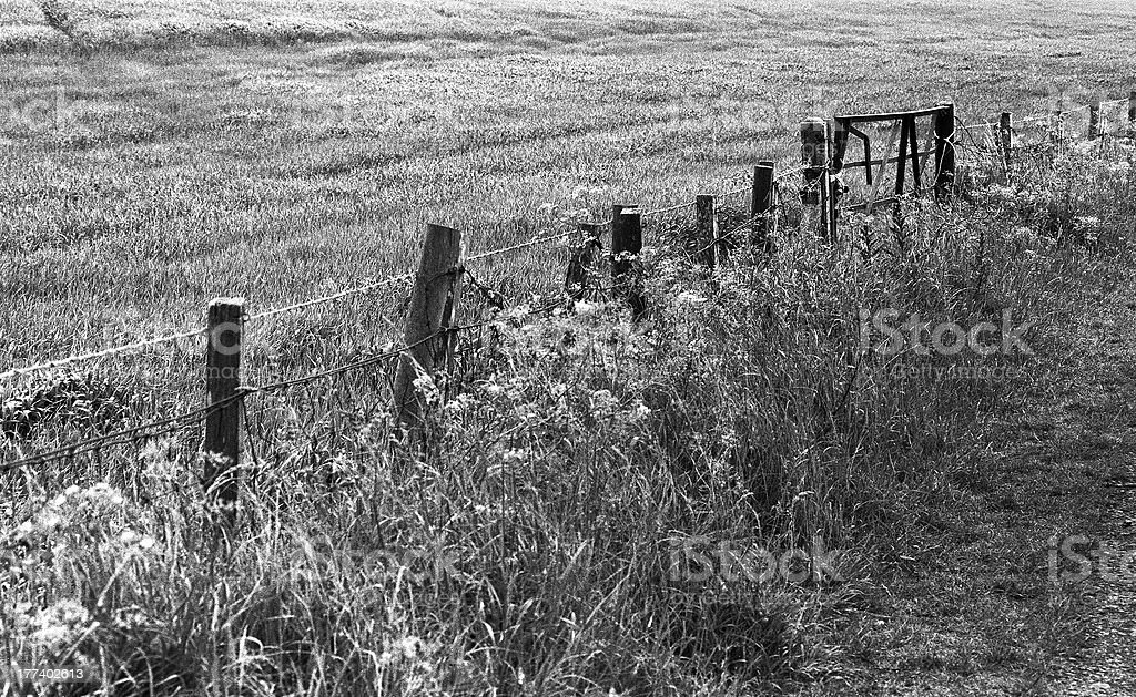 Fence and gate royalty-free stock photo