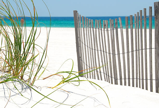 Fence and grass on Pensacola Beach stock photo