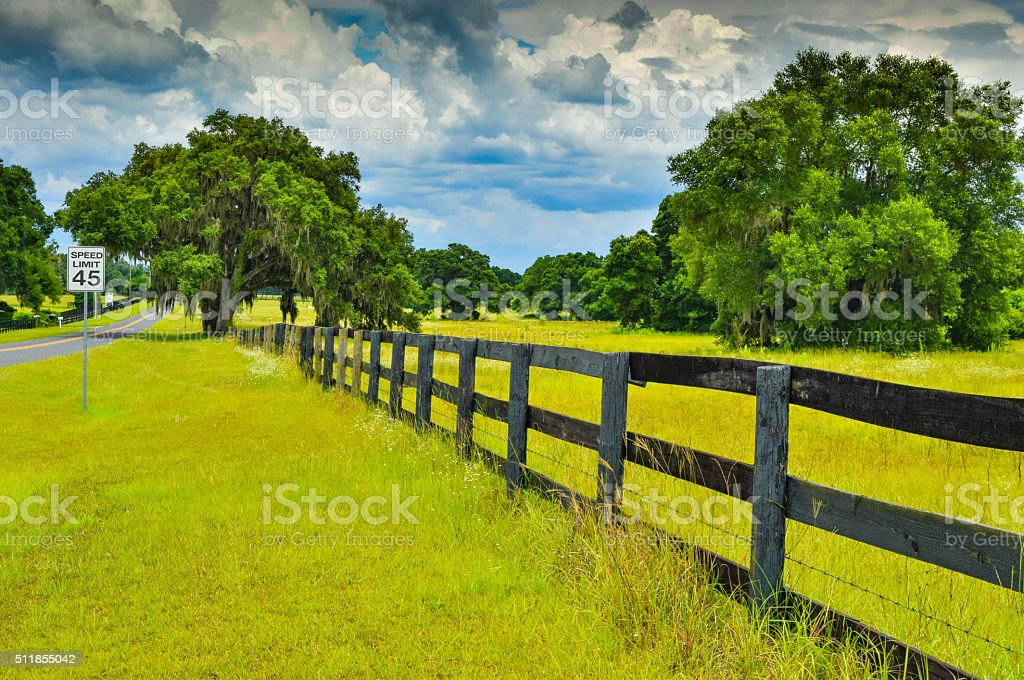 Fence and Pasture stock photo