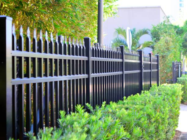 fence and shrub - staccionata foto e immagini stock