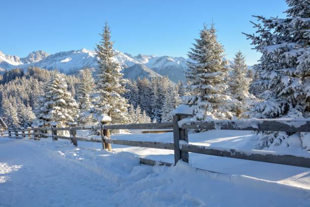 ein zaun mit schnee in einer verschneiten landschaft bedeckt, am nachmittag - fiss tirol stock-fotos und bilder