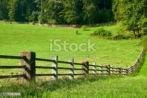 Fence in the meadow