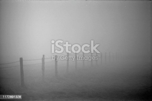 A fence at twilight in a cold, damp, and foggy field, black and white 35mm film.
