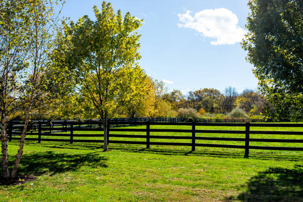 Fence for horses pasture on farm estate grounds in Virginia countryside in Frederick county during autumn fall season with green grass landscape stock photo