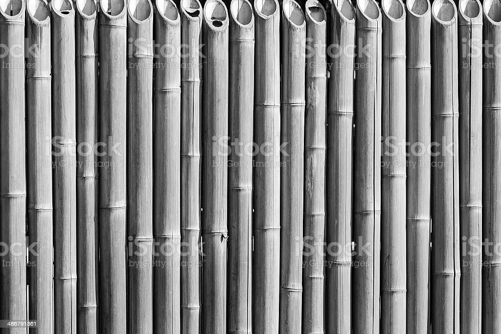 fence from a bamboo monochrome tone stock photo