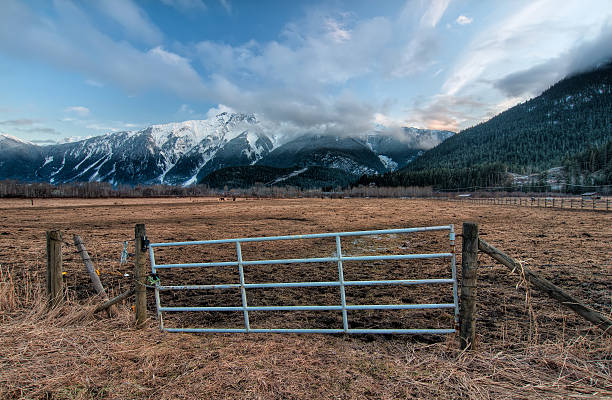 Fence Gate with Snowy Mountains stock photo