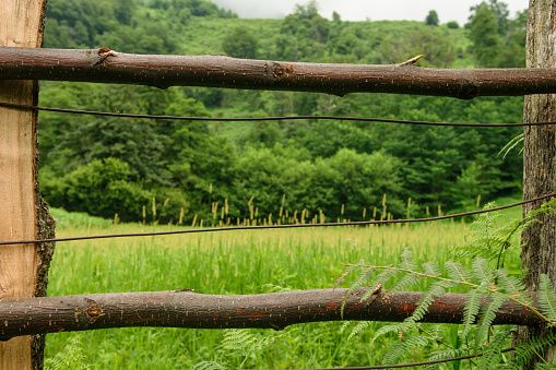 istock Fence in Caucasus mountains in Abkhazia 911759462