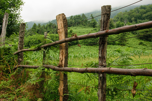 istock Fence in Caucasus mountains in Abkhazia 911759518