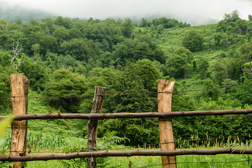 istock Fence in Caucasus mountains in Abkhazia 911759566