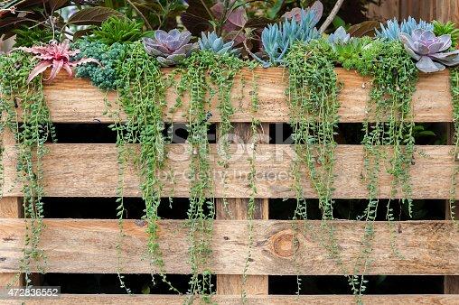 istock fence in garden 472836552
