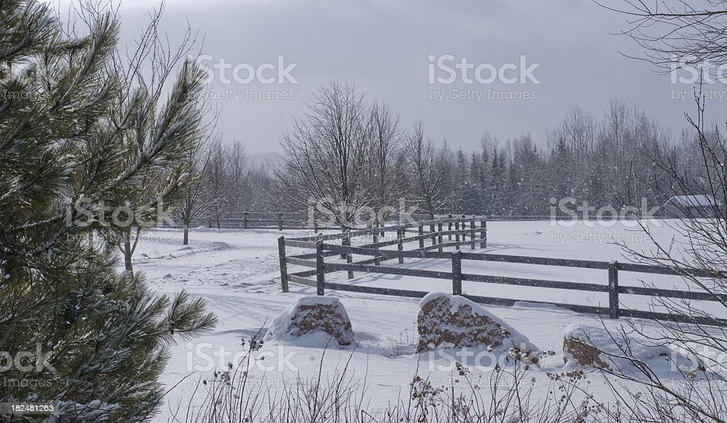 Fence in snow storm stock photo