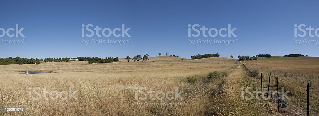 Fence line and paddock stock photo