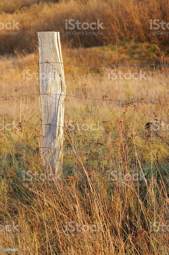 fence on a meadow royalty-free stock photo