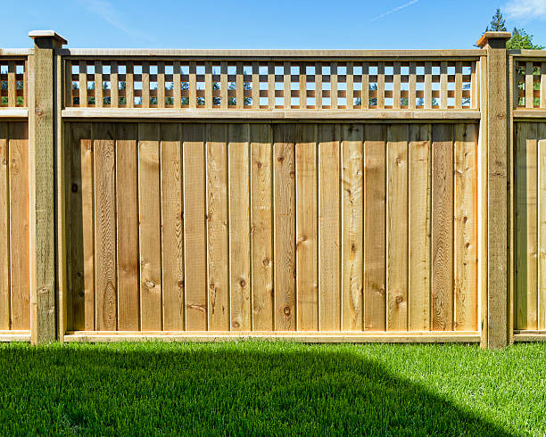 fence panel placed in a yard for safety - fence stock photos and pictures
