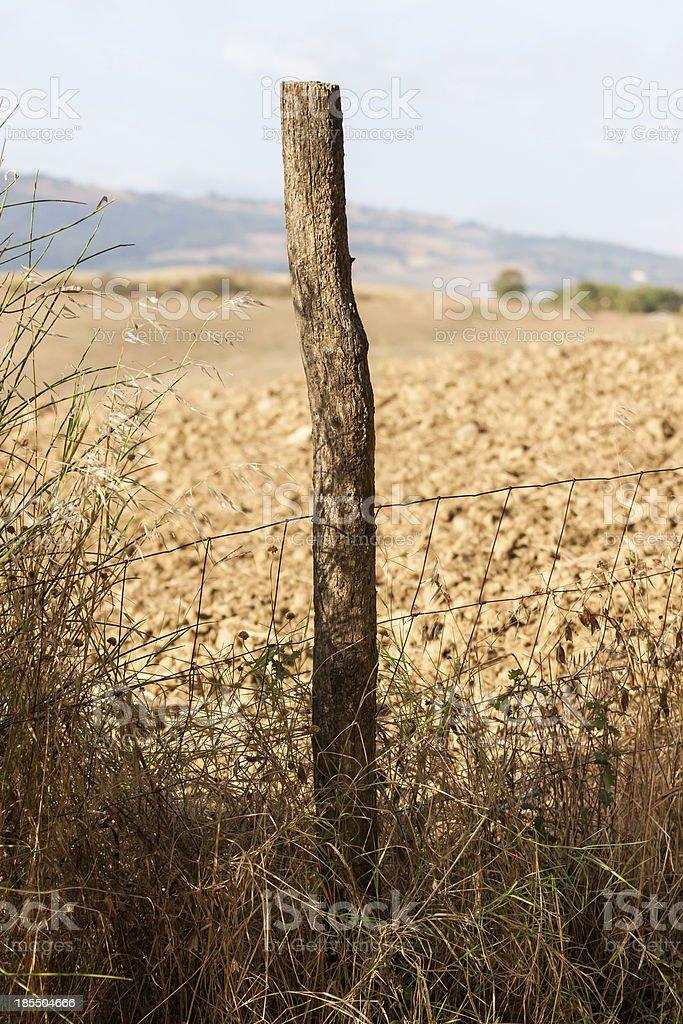 Fence post and an italian farm field stock photo