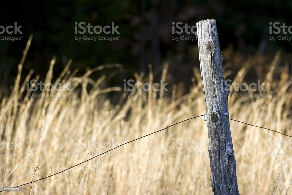Fence Post 免版稅 stock photo
