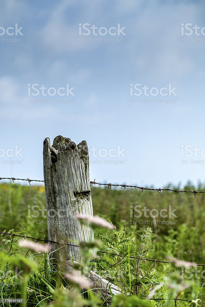Fence post with barbed wire royalty-free stock photo