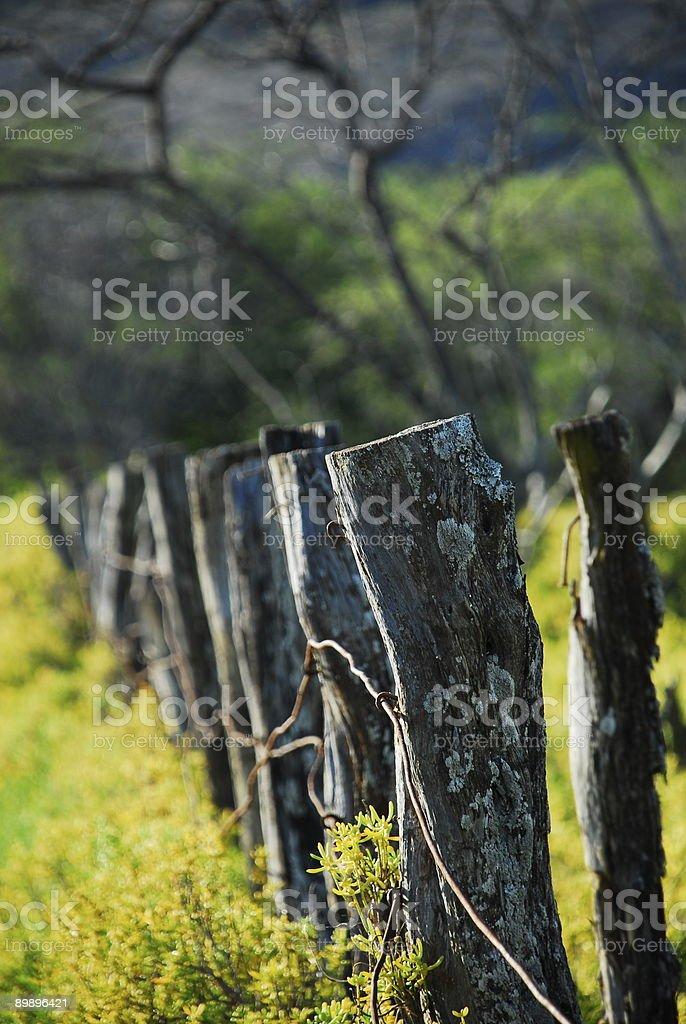 Valla postes 2 foto de stock libre de derechos