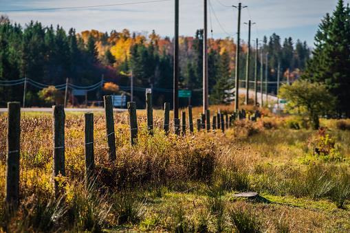 Fence Posts Dividing up the Property Line - Goulais River, Ontario